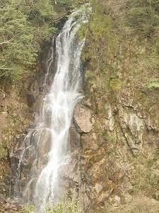 春探し、滝