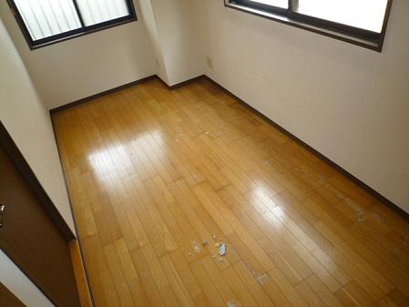 http://file.karasuyamaten.blog.shinobi.jp/P1210541.JPG