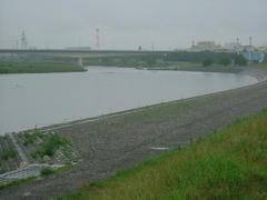 雨の多摩川の風景