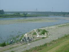夏の多摩川の風景