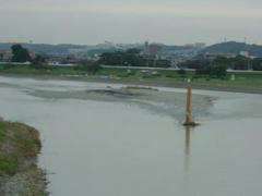多摩川原橋からの多摩川の風景