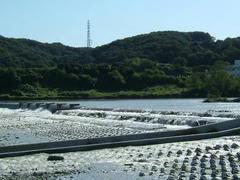 多摩川の堰