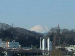 是政橋から富士山を望む