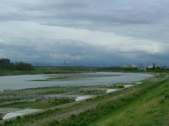 多摩川・増水中