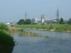 八王子浅川上流