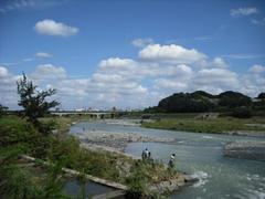多摩川の陸