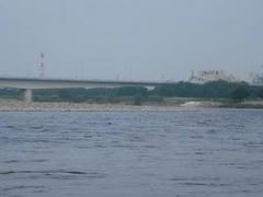 水量多き多摩川