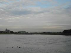 多摩川の川は雄大です