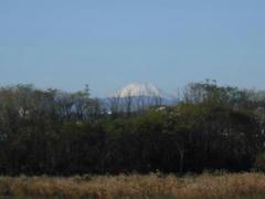 多摩川の富士山1