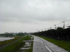 雨の多摩川・遊歩道
