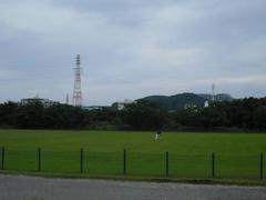 多摩川・河川敷の緑