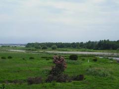 多摩川・河川敷の風景