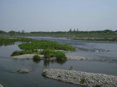多摩川の初夏の風景