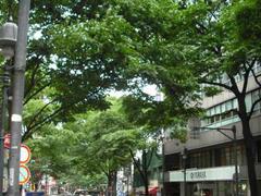 渋谷・道玄坂の風景