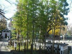 浅草の風景