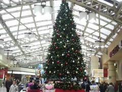 JR上野駅クリスマスツリー