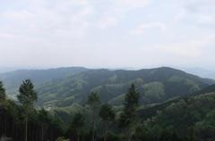 景信山から城山、高尾を望む