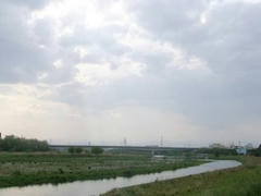 多摩川定点観測