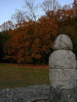 須弥山石のある広場も紅葉