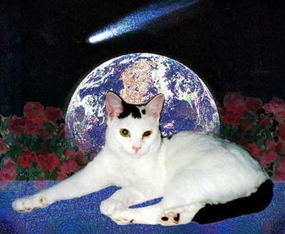 地球は青かった……『ジュウ』