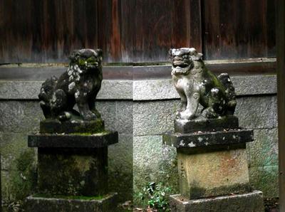 本殿前の狛犬さん。