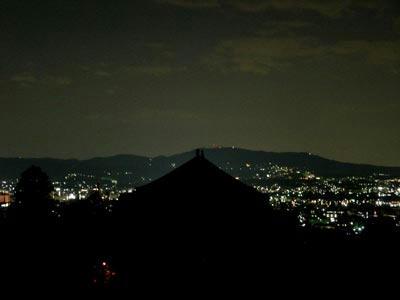 金堂の大屋根と生駒山、そして奈良市街