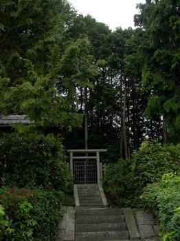 本当に小さな墓所です……