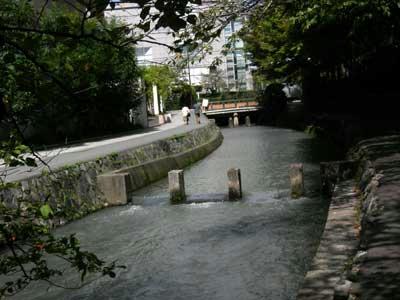 こちらは岡崎の疎水