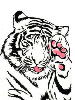 虎は猫科ですね。