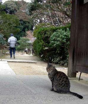 ここがお寺の門です。