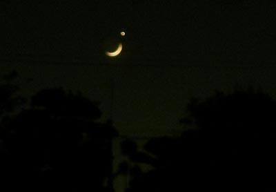 月と金星の犯