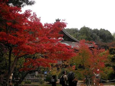 大元堂と紅葉