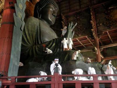 こうして見るとやはり大きいです……・毘慮舎那仏