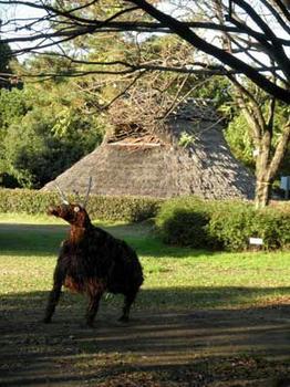 兵庫県考古博物館にいた鹿?