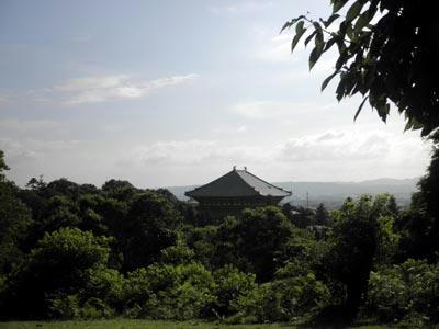 丸山西の平坦地から大仏殿を見る