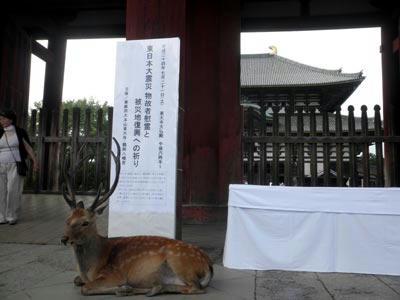 大仏殿の南門にて
