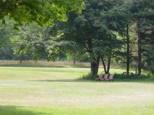 真駒内公園ベンチ