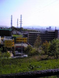 201005015.jpg