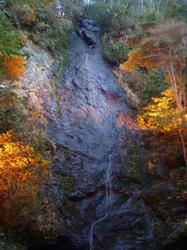 琴滝1225-2
