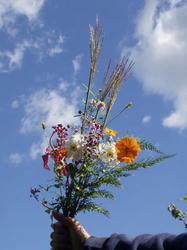 野草の花束