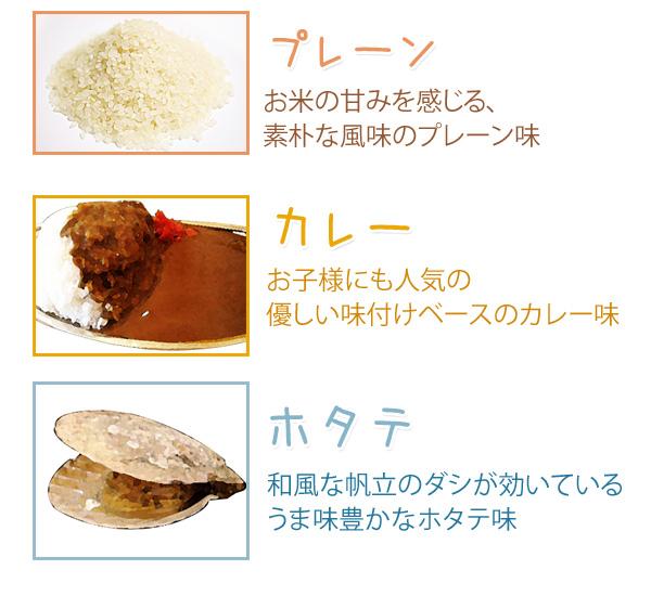災害時などに安心便利 レスキュー飯 10食セット カレー