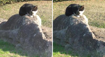 見張り台猫交差法立体画像