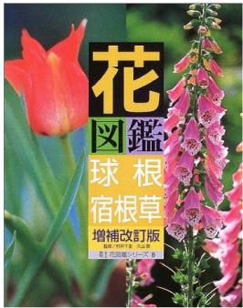 花図鑑 球根+宿根草