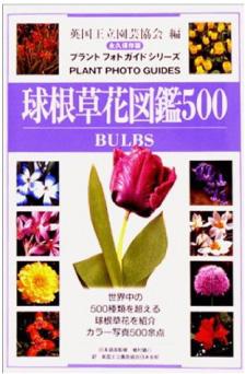 球根草花図鑑500