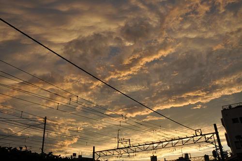 架線と夕空