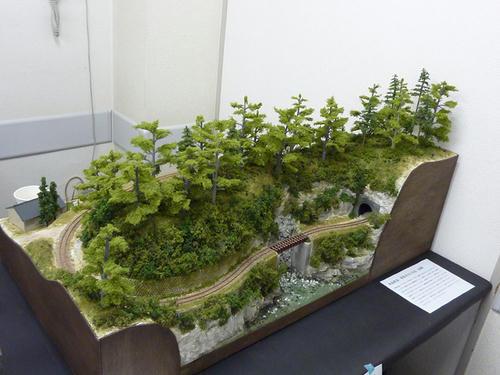 第6回軽便鉄道模型祭2-10