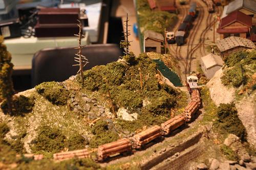 第8回軽便鉄道模型祭1-10