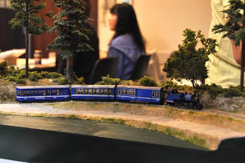 第8回軽便鉄道模型祭1-25