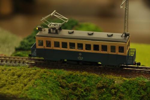 第8回軽便鉄道模型祭3-21