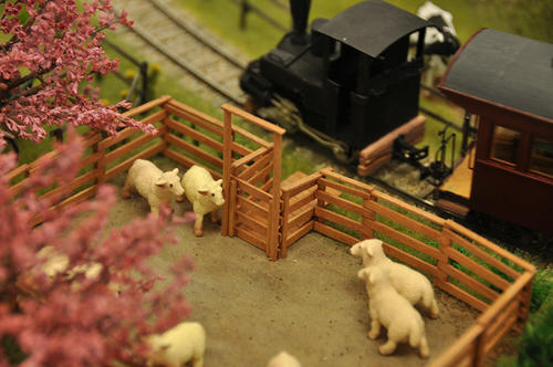 第8回軽便鉄道模型祭3-27